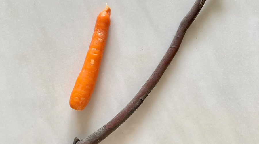 Regulatory approaches: carrot or stick?