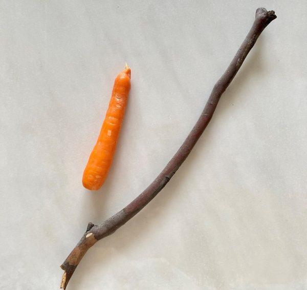 Regulatory approaches: carrot or stick?